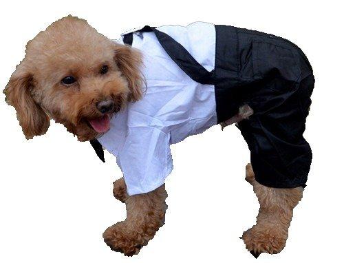QIYUN.Z Fiesta De La Boda Cuatro Patas Camisa Blanca Traje Negro Pantalones Generales Perro Ropa del Gato Mono