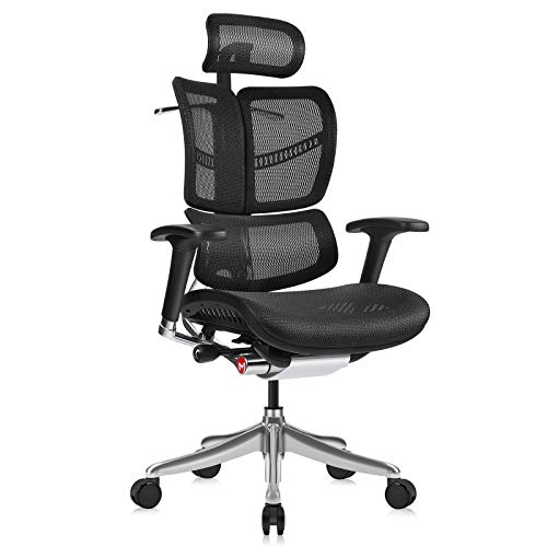 MOOJIRS Ergonomic Office Chair with Headrest Adj and Tilt Limiter|Backrest Height Adj|Seat Depth Adj|3-Dimensional Dynamic Backrest and Lumbar Support|Aluminum Frame/with Standard Carpet Casters