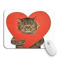 ROSECNY 可愛いマウスパッド 悪い猫はノートのマウスマットのための性交ノンスリップゴムバッキングコンピューターマウスパッドの彼の前足サインを示しています