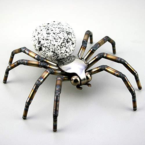 Gebrüder Lomprich Steinvogelspinne SV Spinne, Größe ca. 15 x 15 cm