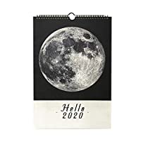 Xigeapg 1個 壁掛けカレンダーの議題365日デイリー行うべきプランナーの注意事項リスト 引き裂き可能な卓上カレンダー装飾創意カレンダー02