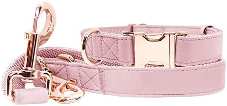 Soft Leather Dog Collar and Leash 6 6 Set Stylish Rose Gold Heavy Duty Metal Buckle 4 Adjustable product image