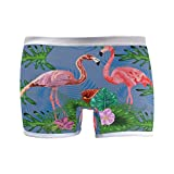 Womens Underwear Boyshort Panties Tropical Flamingo and Monstera Leaves Ladies Seamless Boxer Briefs Panty