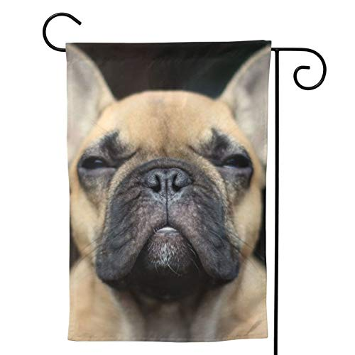 French Bulldog Garden Flag Dog House Flag Vertical Double Sided Yard Outdoor Decor Party 12.5 X 18 Inch