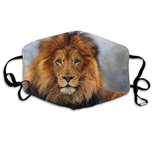 Mundschutz Mundschutz Gesichtsschutz Mundschutz Muffel Löwenmuster Anti-Staub Waschbar Wiederverwendbarer Gesichtsschutz Muffel Unisex