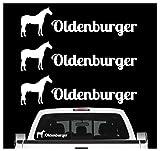 Siviwonder Oldenburger Sportpferd Aufkleber 3er Set Pferdeaufkleber Pferd reiten Auto Folie Farbe Weiss, Größe 30cm