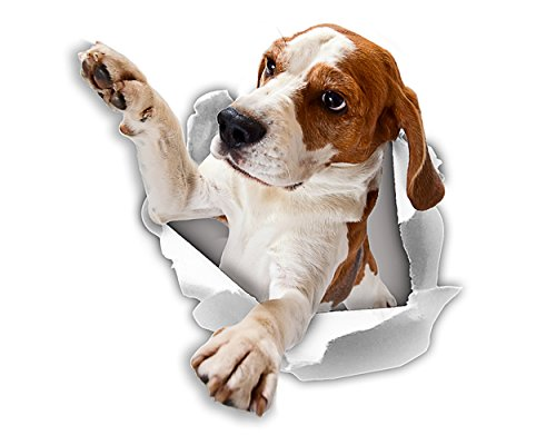 Winston & Bear 3D Dog Stickers - 2 Pack - Reaching Beagle Stickers For Wall, Fridge, Toilet And More Beagle Stickers
