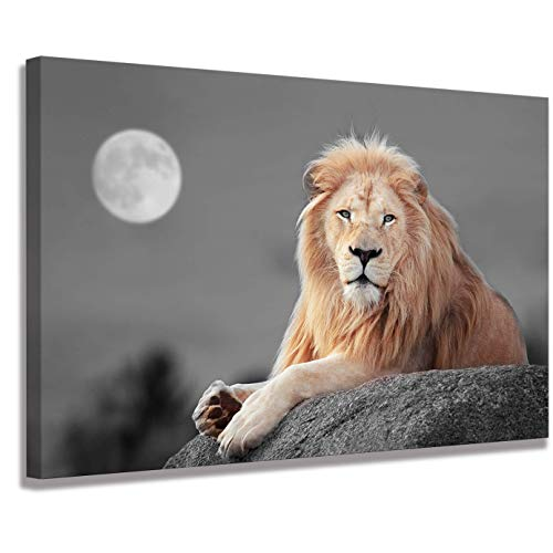 Lion Wall Living Room Decoration Scarface Poster Art Wall Paintings Animal Wall Art Lion of Judah Wall Art Animal Decor Lion Poster Canvas Print Animal Pictures Brown Decor Three-Piece Home