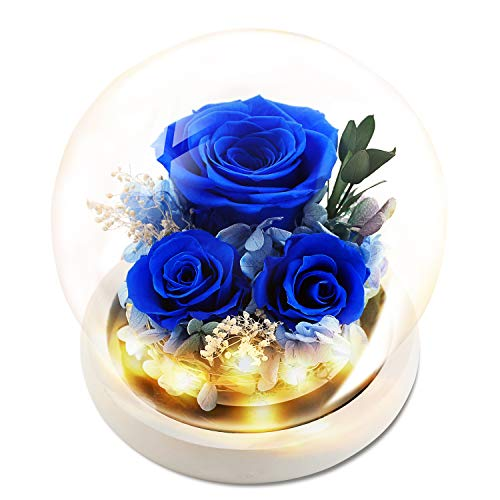 KING DOO Forever Royal Blue Rose with LED Mood Lights 3 Heads Handmade Preserved Rose Real Rose in Glass Dome, Birthday, Dating, Wedding, Parties, Christmas and Valentine's Day