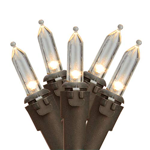 Northlight 50 Warm Clear LED Mini Christmas Lights - 16.25 ft Brown Wire