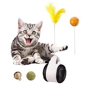 WANXIANG Jouet pour chat qui peut se balancer d'avant en arrière Jouet interactif balle et plume Jouets pour chats d'intérieur Jouets pour chaton Cataire pour exercer leur intelligence