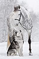 PQGHJ パズル、パズル-白い馬とオオカミ-大人のためのジグソーパズル1000ピースパズル、木製クラシックパズルモダンアート家の装飾ユニークなギフト