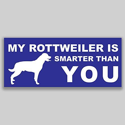 JMM Industries My Rottweiler is Smarter Than You, calcomanía de vinilo para parachoques de coche, paquete de 2 unidades, 7.5 pulgadas por 3 pulgadas, laminado protector UV de calidad premium PDS1142