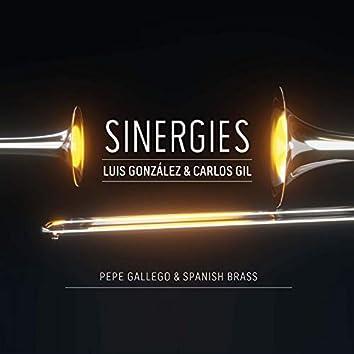 Sinergies