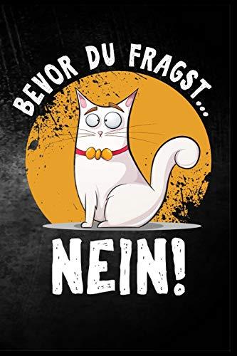 Bevor du fragst - nein!: Katze Provokation Katzenhalter Kater Spaß Geschenk (6