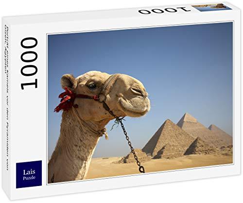 Lais Jigsaw Puzzle Retrato de un camello delante de las pirámides de Giza, Egipto 1000 piezas