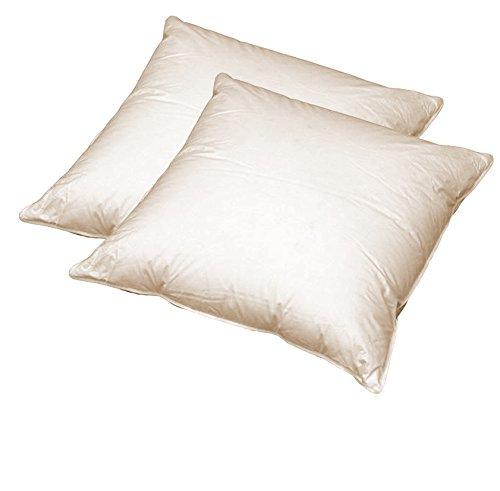 Juego de 2 cojines de plumas para sofá (40x40 cm)