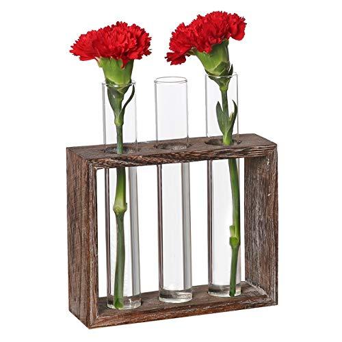 DEDC Pflanzenhalter Hydroponische Glasvase Blumenvase Pflanzen Glasvase für Zuhause, Café, Zimmer, Tisch, Party, Hochzeit, Dekoration (Reagenzglas Blumenvase)