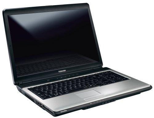 Toshiba Satellite L350D-206 43,2 cm (17 Zoll) WXGA Laptop (AMD Athlon 64 X2 QL-64 2,1GHz, 4GB RAM, 400GB HDD, ATI Radeon 3100, DVD-+ DL RW, Windows Vista Home Premium)