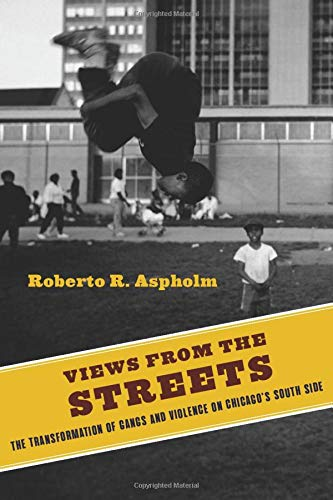 Views from the Streets: The Transformation of Gangs and Violence on Chicago's South Side (Studies in Transgression)