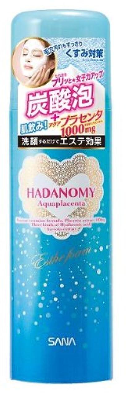神社準備した深くハダノミー エステフォームp 110g【HTRC2.1】