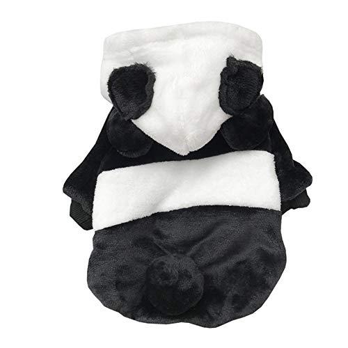 Jnzr Kat Kleding, Grappige Puppy Kleding, Huisdier Sweater Panda Stijl Twee-benige Pak voor Kleine Honden En Katten, XL
