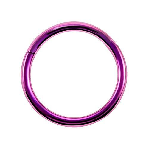 ZNQPLF 1 Unid Titanio con Bisagras Anillo De La Nariz 16g 14g De Cartílago De Oreja Tragus Helix Piercing De Labios (Main Stone Color : 1.2x12mm, Metal Color : Purple)
