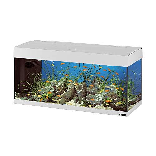 Ferplast 65036011 Aquarium, Maße: 101 x 41 x 53 cm, 190 L, weiß