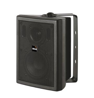Ahuja Wall Speaker 30Watts 2-Way Speaker SMX-302T