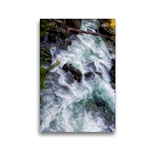 CALVENDO Premium Textil-Leinwand 30 x 45 cm Hoch-Format Malerische Strudel, Leinwanddruck von Liselotte Brunner-Klaus