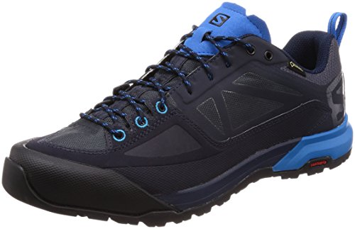 Salomon X ALP Spry GTX, Zapatillas de Senderismo para Hombre, Azul (Night Sky/Graphite/Indigo Bunting 000), 42 2/3 EU