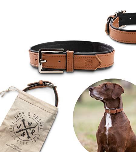 Jack & Russell Premium Leder Hunde Halsband Lilly - Lederhalsband Kalbleder - Hundehalsband Echtleder Lilly (XL, Braun/Schwarz)
