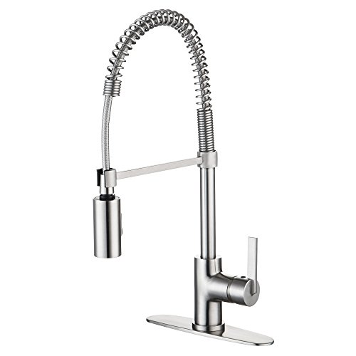 Enzo Rodi ERF7209251AP-10 Modern Commercial Kitchen Faucet With Pull-Down Sprayer,Stainless Steel