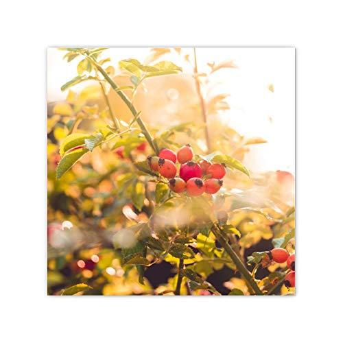 TattyaKoushi Lienzo sin marco para decoración de pared de baño, lienzo enmarcado, decoración de pared para sala de estar/dormitorio, arbusto de rosa con bayas de rosa mosqueta, 40,6 x 40,6 cm