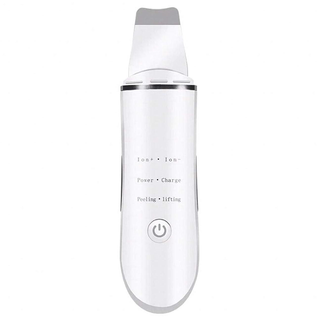 プラグリングバックビザにきび除去剤, にきびを取り除く きれいな毛穴 顔を持ち上げる 超音波ショベル イオンクリーニング 電気美容器具