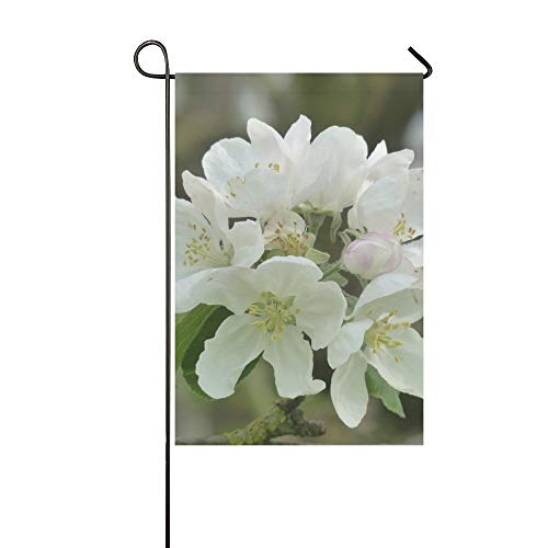 Home Decorative Outdoor Double Sided Apple Blossom Apple Tree Blossom Bloom White Garden Flag,house Yard Flag,garden Yard Decorations,seasonal Welcome Outdoor Flag 12 X 18 Inch Spring Summer Gift