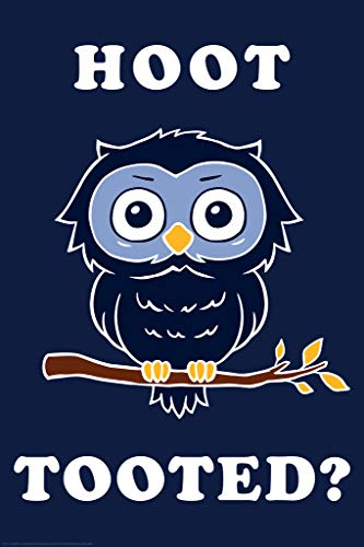 Hoot Tooted Who Owl Funny Parody LCT Creative Cool Wall Decor Art Print Poster 12x18