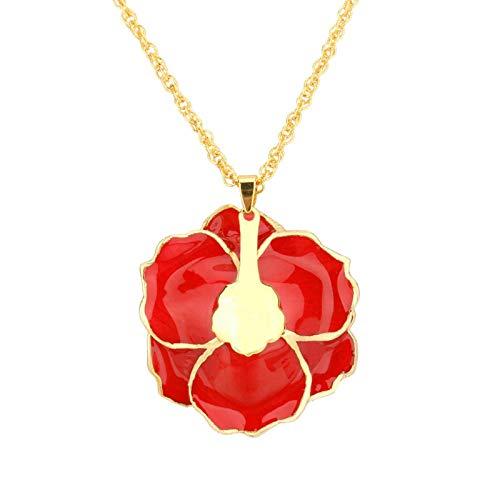 Shipenophy Collar de Mujer Embalaje de Regalo de cortesía Accesorio de Vestir...