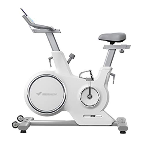 Bicicleta Estática Ultra Silenciosa para Interiores Bicicleta Estática con Ajuste De Resistencia con Control Magnético Asiento Y Apoyabrazos Ajustables Bicicletas estáticas y de Spinning