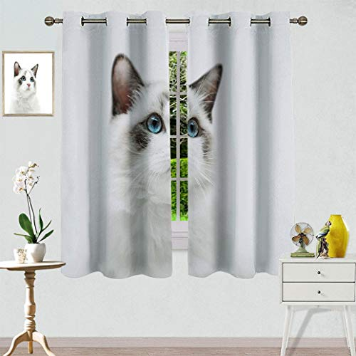 "Exotidecor Cat Window Curtain Panels, Cute White Kitty with Blue Eyes Portrait Whiskers Best Pet Animal I Love My Feline Themed Artwork Light Blocking Drapes Drop for Nursery, 1 Panel 27.5"" Wx45 L"