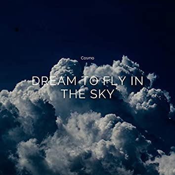 Dream to Fly in The Sky
