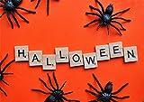 TK Gruppe Timo Klingler 20x Spinnen Set zu Halloween als Grusel Deko & Dekoration für Haus, Tisch & Garten - Spinnendeko - 4