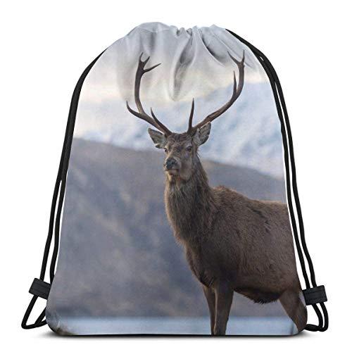 Red Deer Stag in Highland Scotland Drawstring Bag Sports Fitn Bag Travel Bag Gift Bag