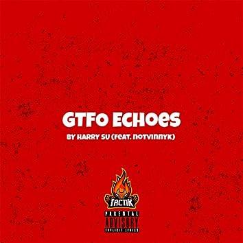 Gtfo Echoes (feat. Notvinnyk)