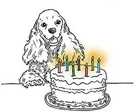 Cocker Spaniel Birthday Card (Blank Inside)