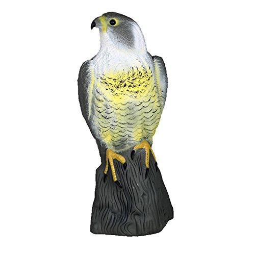 Generic Il Controllo Dei Parassiti Realistico Falco Spavento Gatto Scarer Coniglio Uccello Repeller