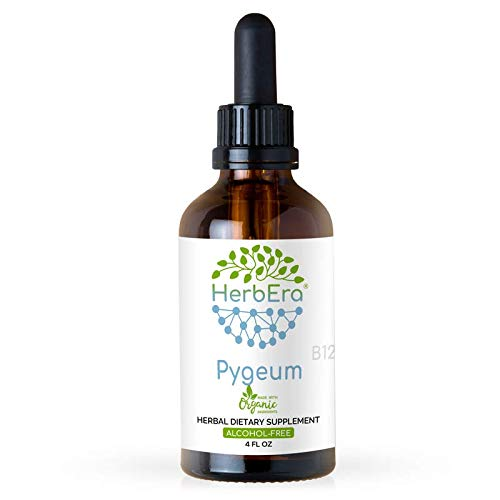 Pygeum B120 Alcohol Free Herbal Extract Tincture, Super-Concentrated Wildcrafted Pygeum (Pygeum Africanum) (4 fl oz)