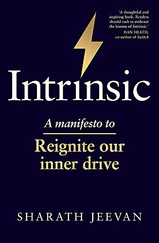 Intrinsic: A manifesto to reignite our inner drive