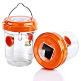 BEE Coline Wasp Trap - Wasp Killer 2 Packs - Fruit Fly Trap for Wasp, Bee, Gnats, Hornets and Flying Insect - Solar Powered Panel Bee Trap Outdoor