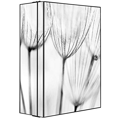 banjado XXL Medizinschrank abschliessbar | großer Arzneischrank 35x46x15cm | Medikamentenschrank aus Metall grau | Motiv Pusteblumen SW mit 2 Schlüsseln | Gestaltung auf Front und Seiten